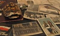 Aktionstage zum Projekt Erster Weltkrieg in Alltagsdokumenten
